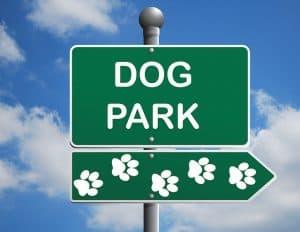 dog-park-1497655_640