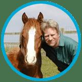 horse-visits
