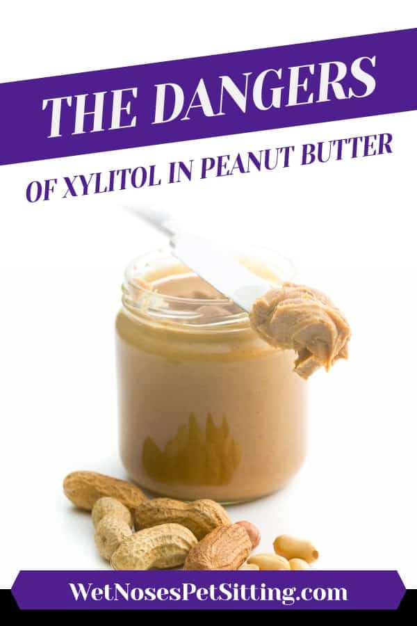 The Dangers of Xylitol in Peanut Butter Header