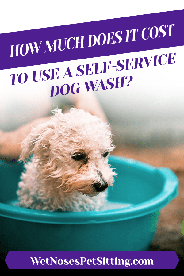 How much does it cost to use a self service dog wash wet noses depending on where you go in fort collins or loveland and what type of bath package you choose a self service dog wash can range in pricing solutioingenieria Images