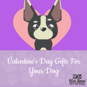 How much does it cost to use a self service dog wash wet noses valentines day gifts for your dog solutioingenieria Gallery