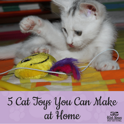 5 diy cat toys you can make at home wet noses pet sitters