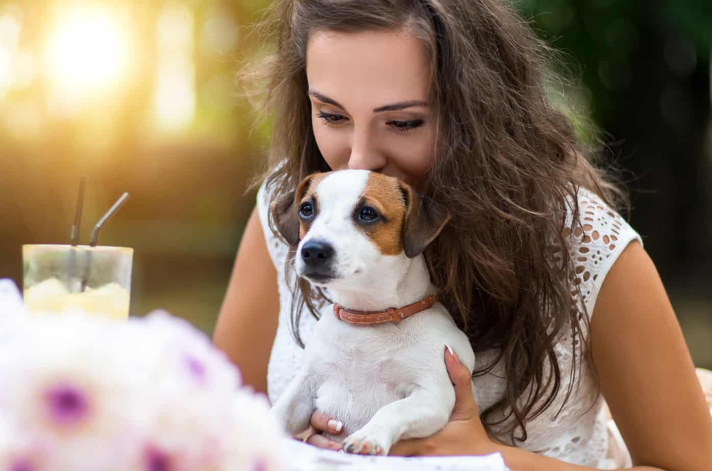 Pet friendly restaurants in fort collins dining with your dog a lot of times restaurants and dogs dont mix but dont fret luckily there are some great places around fort collins where your pet is welcome solutioingenieria Gallery