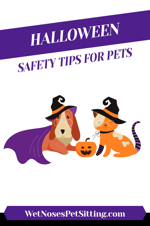 Halloween Safety Tips for Pets Header