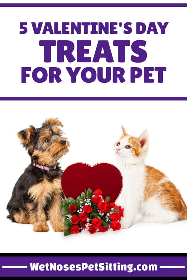 How To Make Valentine S Day Treats For Your Pet Ideas From Wet Noses
