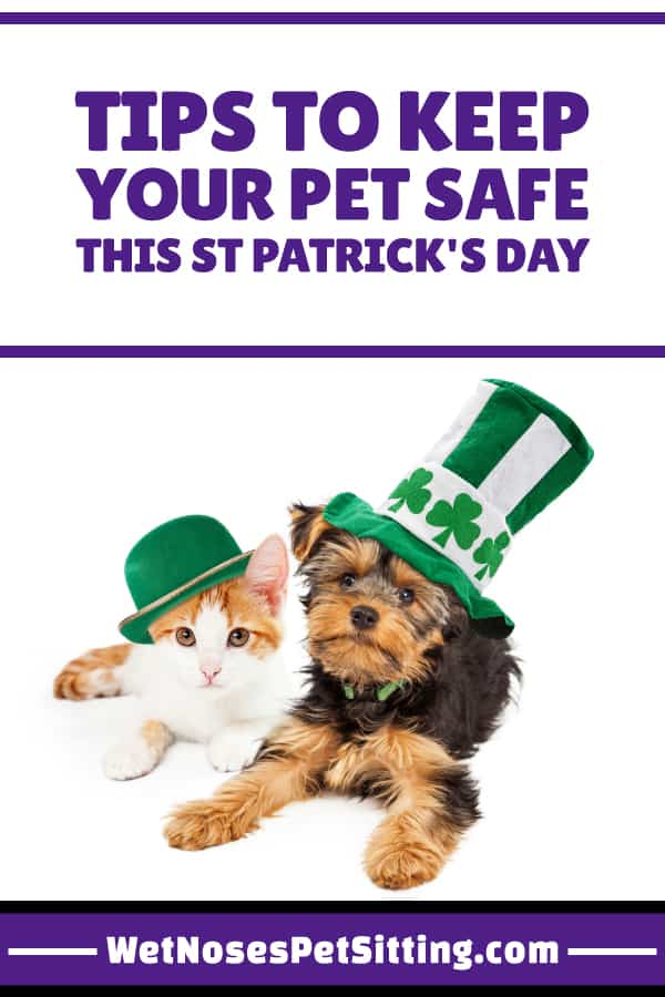Fun with St. Patricks Day Pets