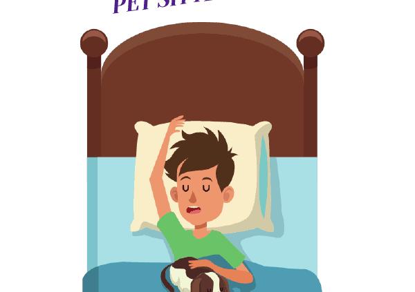 Where Does an Overnight Pet Sitter Sleep? Header
