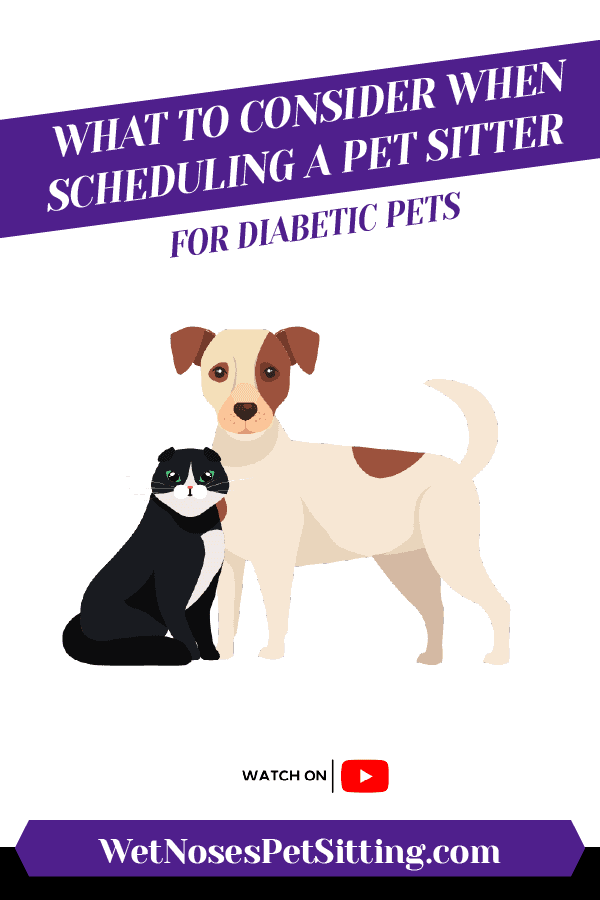 What To Consider When Scheduling a Pet Sitter for Diabetic Pets Header