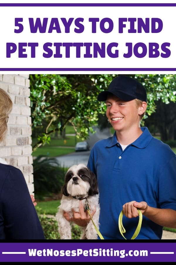 5 Ways to Find Pet Sitting Jobs - Wet Noses Pet Sitting