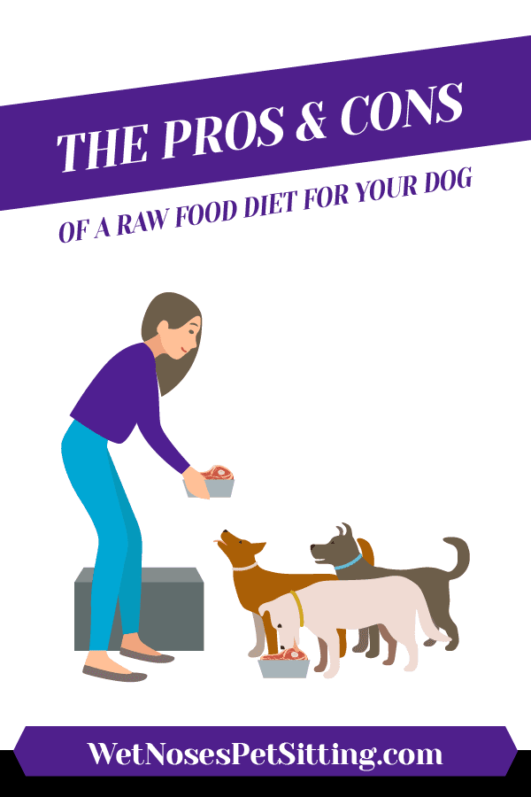 The Pros and Cons of a Raw Food Diet for your Dog Header
