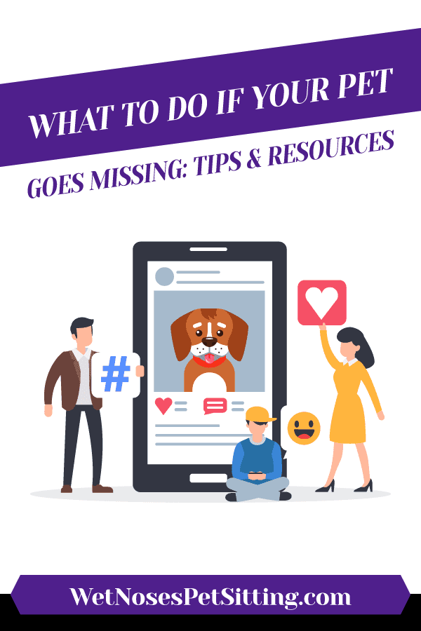 What to do if your pet goes missing tips and resources header