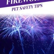 Fireworks Pet Safety Tips Header
