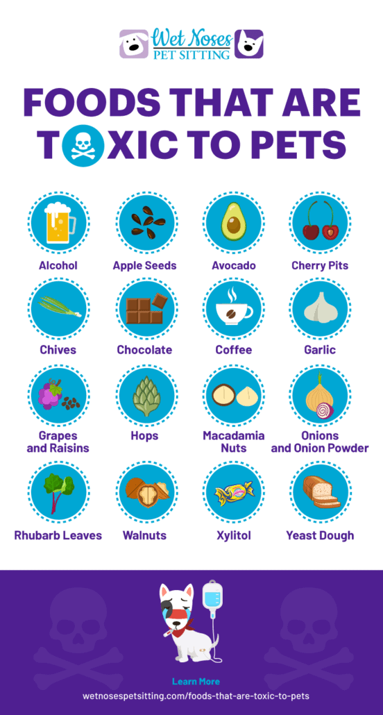 Foods that are Toxic to Pets Infographic