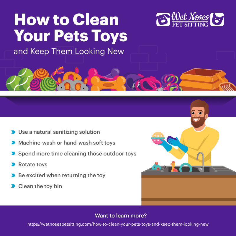 How to Clean Your Pets Toys and Keep Them Looking New Infographic