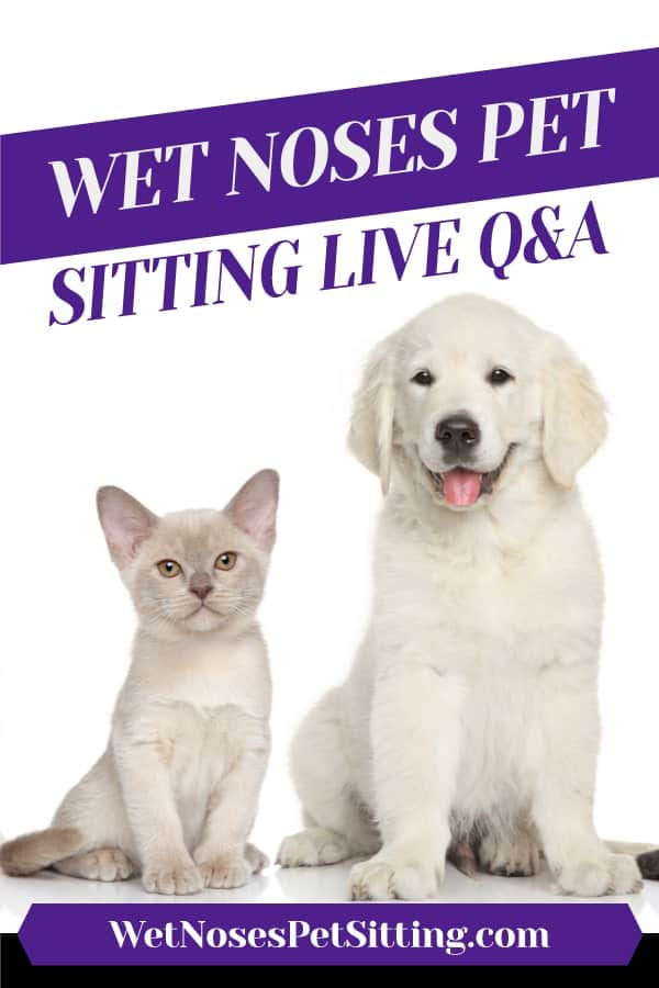 Wet Noses Pet Sitting Live Q&A Header