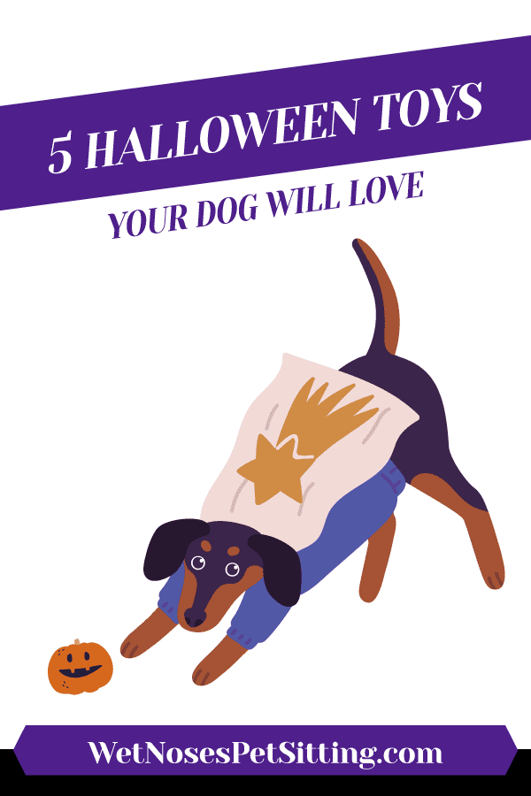 5 Halloween Toys Your Dog Will Love Header