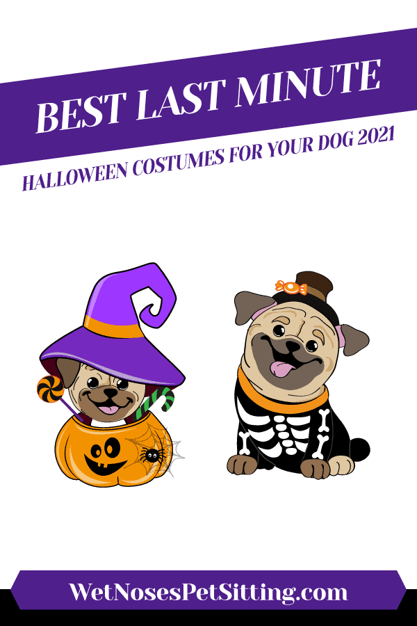 Best Last Minute Halloween Costumes for Your Dog 2021 Header